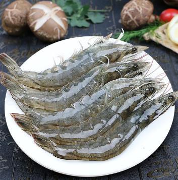 大虾鲜活海鲜水产虾基围虾,