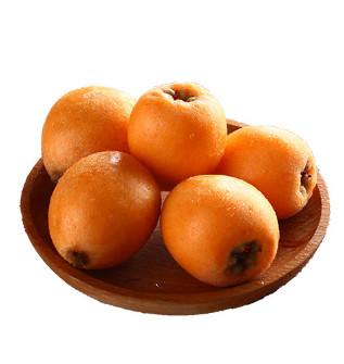 现货现摘攀枝花米易枇杷果新鲜水果,