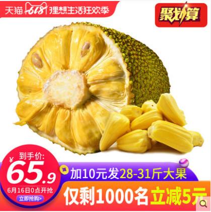 【六井旗舰店】海南菠萝蜜 现摘现发23-26斤