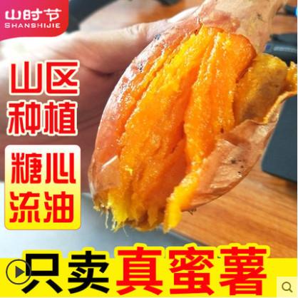 【山时节旗舰店】地瓜沙地蜜薯  山东烟薯5斤