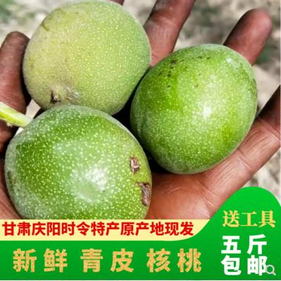 甘肃庆阳特产 带青皮核桃孕妇薄皮湿核桃5斤(送工具)