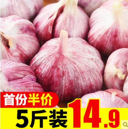 【福瑞达旗舰店】云南新鲜大蒜紫皮大蒜头5斤装