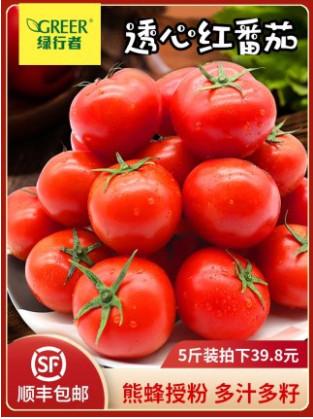【顺丰包邮】【绿行者】透心红番茄5斤装
